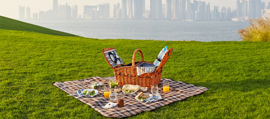 Picnic at MIA